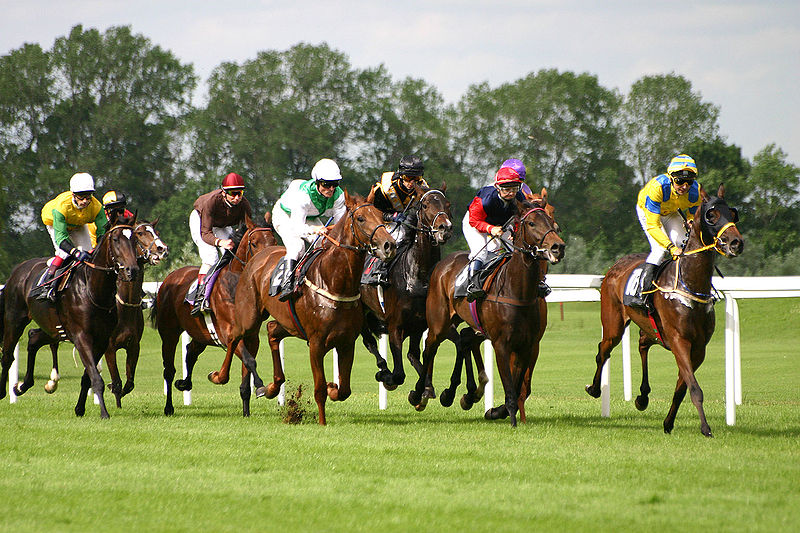 2.800px-Horse-racing-1 WIKI - Softeis